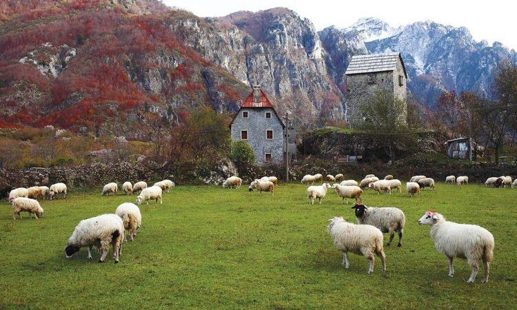 Uroki Albanii